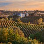The 6 Best Gourmet Restaurants in Piedmont