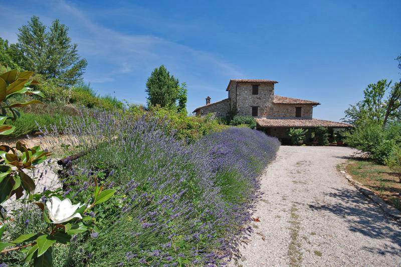 Todi Umbrian-countryside Umbria Casale Rose Garden gallery 001